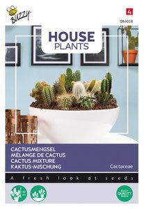 Cactus zaden kopen, Cactusmengsel mix mengsel ferocactus   Moestuinland