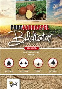 Pootaardappels kopen, Bildtstar (1kg) | Moestuinland
