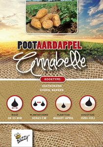 pootaardappel kopen annabelle 1 kg bij moestuinland