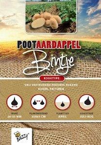 Pootaardappel Bintje 1KG kopen, Aardappels pootgoed   Moestuinland