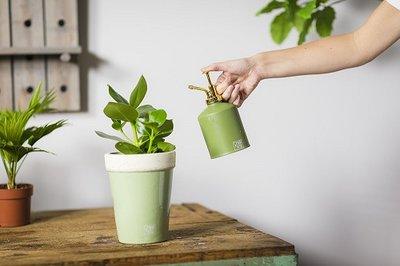 Plantensproeier kopen, groentinten vintage sfeerfoto
