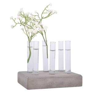 Stekset kopen kweekbuisjes glas glazen met betonnen voet   Moestuinland