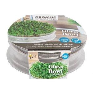 Kiemschaal, Sprouting Bowl | inclusief zaden