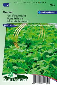 Zaden voor witte/gele mosterd - Moestuinland