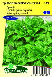 spinazie zaden kopen - moestuinland