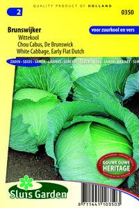 zaden kopen voor witte kool - moestuinland