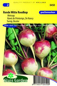 zaden kopen voor meirapen - moestuinland