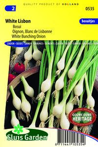 uien zaden bosui lenteui | Moestuinland