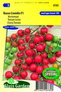 rosso cremlin F1 tomaten kopen | Moestuinland