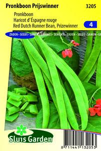 bonen zaden, pronkboon prijswinner | Moestuinland