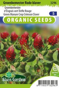 Biologische rode klaver zaden kopen moestuin | Moestuinland