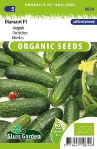 biologische zaden kopen voor augurken - moestuinland