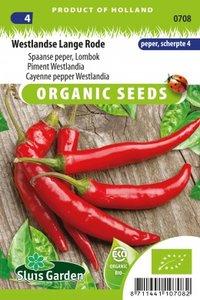 Biologische peper zaden kopen   Lange Rode   Moestuinland