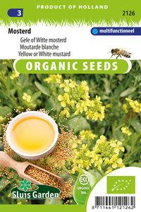 Biologische Zaden voor Mosterd kopen - Moestuinland