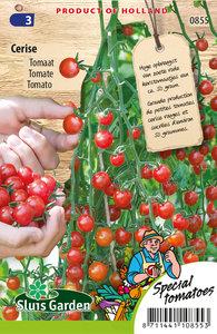 Kerstomaatjes zaden kopen, Cerise tomaat | Moestuinland