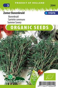 Biologische bonenkruid zaden kopen, Zomer bonenkruid | Moestuinland