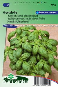 Basilicum zaden kopen, grootbladig | Moestuinland