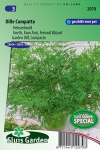 Dille zaden kopen, compatto pot heksenkruid | Moestuinland