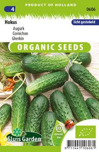 Biologische augurk zaden kopen, augurken hokus | Moestuinland
