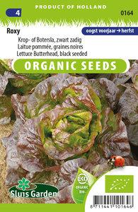 Biologische rode sla zaden kopen, roxy biologisch   Moestuinland