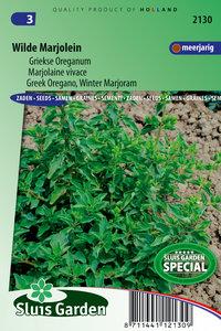 Wilde marjolein zaden kopen, oregano - moestuinland