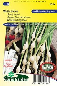 Zaadlint uien zaden kopen, White Lisbon bosuien | Moestuinland