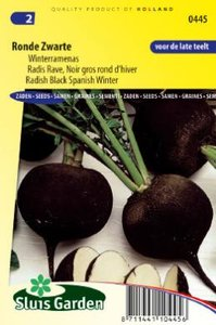 Rammenas zaden kopen, ronde zwarte winter | Moestuinland