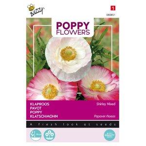 Klaproos zaden kopen, Papaver rhoeas Shirley Mixed | Moestuinland