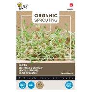Linzen zaden kopen, Organic Sprouting | Moestuinland