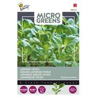 Japanse Tatsoi Zaden Kopen, Micro Greens | Moestuinland