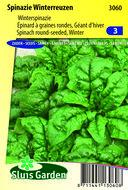 zaden voor spinazie winterreuzen - Moestuinland