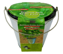 zaaiemmer basilicum kopen - moestuinland