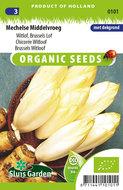 biologische witlof zaden kopen - moestuinland