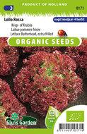 biologische zaden kopen voor rode krul sla - moestuinland