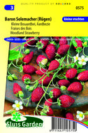 Aardbei zaden kopen | baron solemacher | Moestuinland