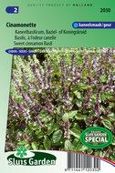 Kaneelbasilicum zaden kopen moestuin kruiden | Moestuinland