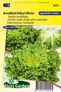 zaden kopen voor andijvie, breedblad - moestuinland